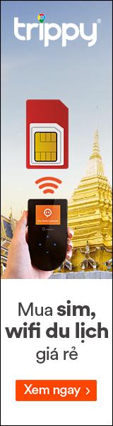 Sim & Wifi du lịch